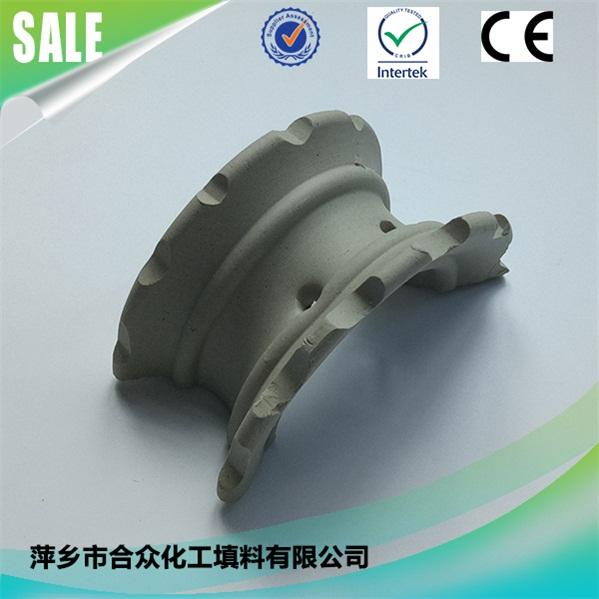 陶瓷异鞍环 (3)