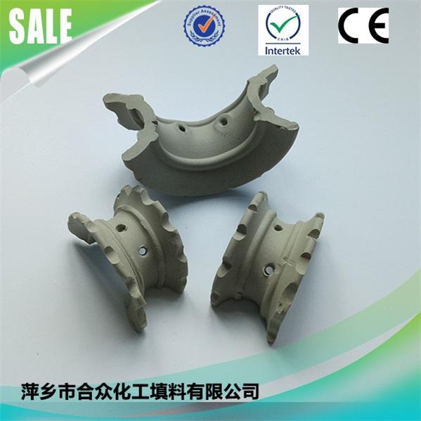陶瓷异鞍环 (2)