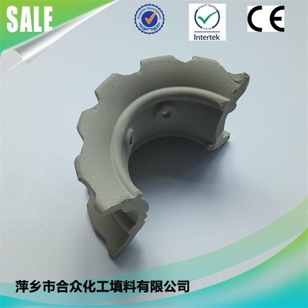 陶瓷异鞍环 (1)