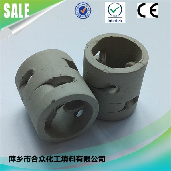 陶瓷鲍尔环 (4)