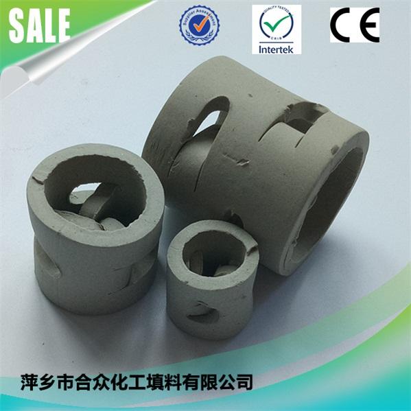陶瓷鲍尔环 (3)