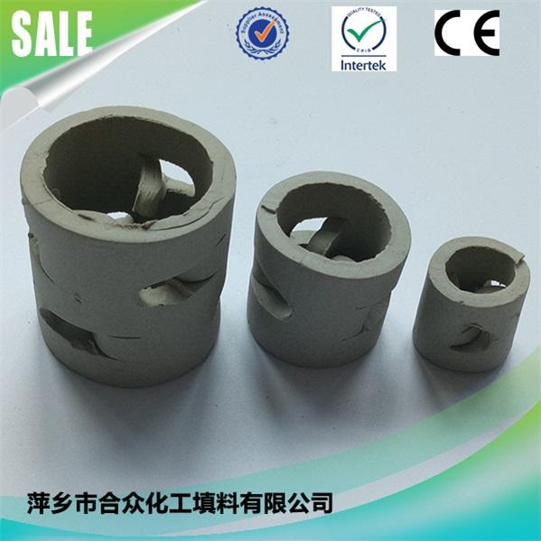 陶瓷鲍尔环 (2)