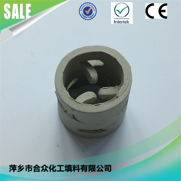 陶瓷鲍尔环 (1)
