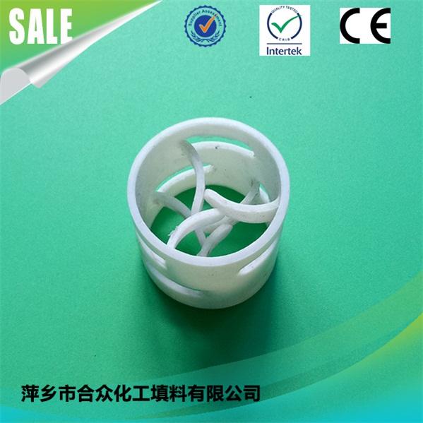 PTFE Pall Ring PTFE 鲍尔环 (4)