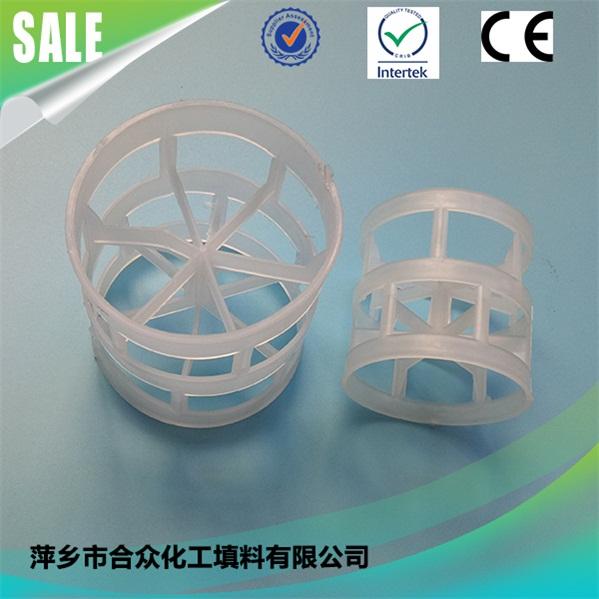 Plastic Pall Ring 塑料鲍尔环 (10)