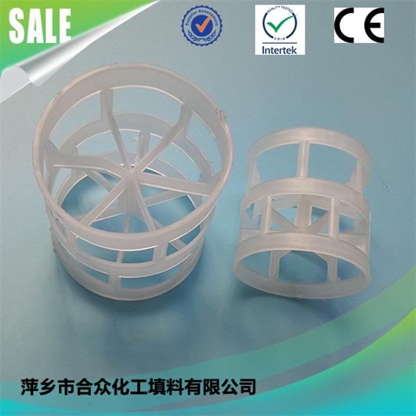 Plastic Pall Ring 塑料鲍尔环 (9)