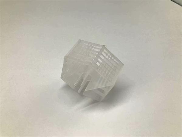 Plastic Lanpack 塑料兰帕克 (3)