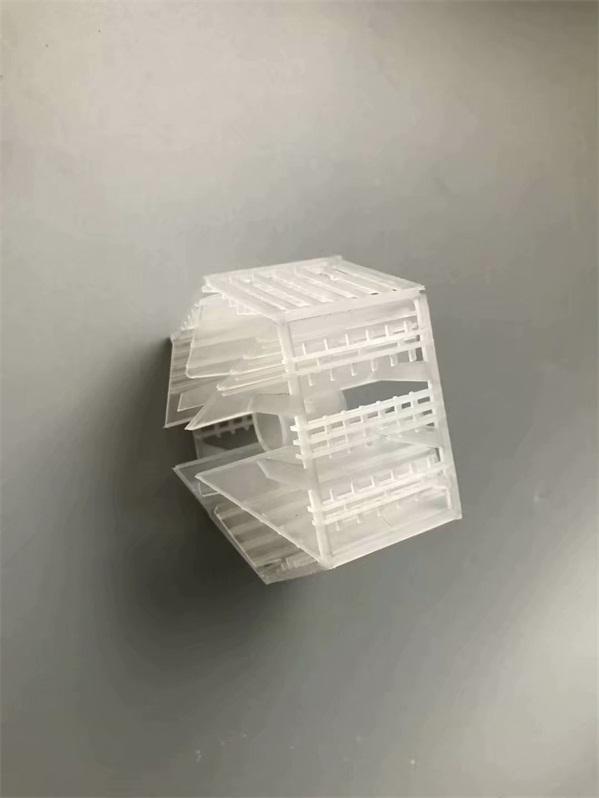 Plastic Lanpack 塑料兰帕克 (1)